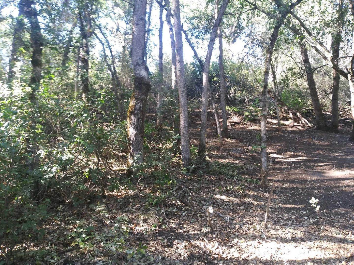 Land / Lots for Sale at 15345 Birch Avenue Clearlake, California 95422 United States